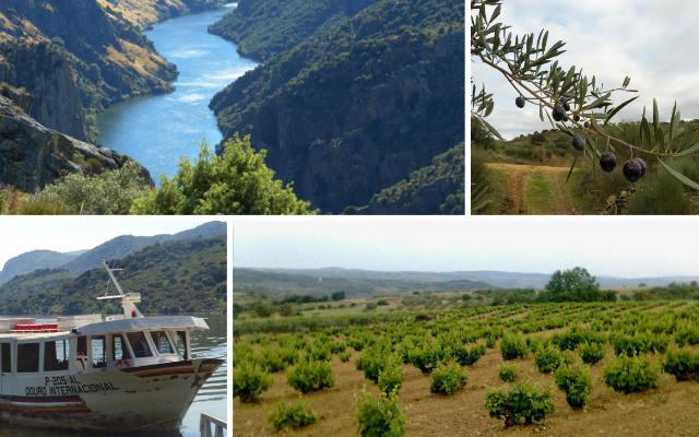 Parajes de la DO. Arribes del Duero - Destino Castilla y León