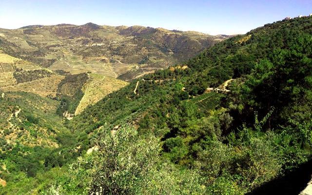 Carreteras entre montaña del norte de Portugal - Destino y Sabor