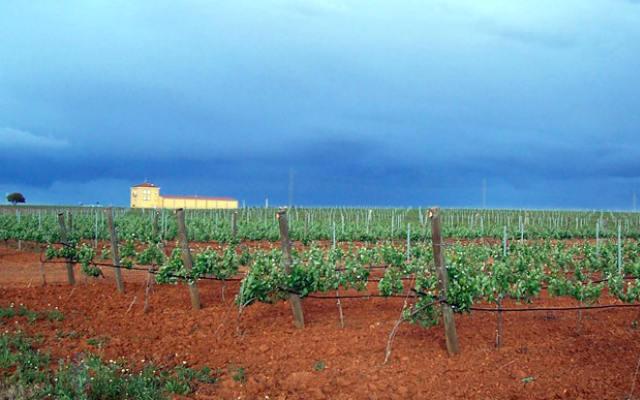 Bodega Otero en Benavente - Imagen de la Bodega