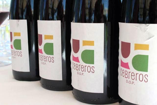 Botellas de la DOP Cebreros