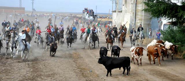 Encierros taurinos de Medina del Campo - Imagen de MasMedina