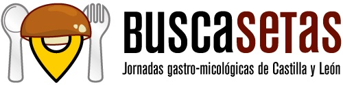 Jornadas Buscasetas 2018