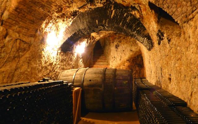 Cueva más profunda de Bodega Muelas - Destino Castilla y León
