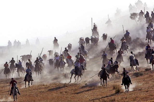 Encierros a caballo en Cuéllar - Imagen de Cardinalia