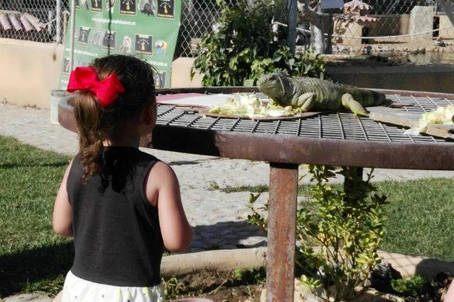 La Era de las Aves en Fresno el Viejo - Destino Castilla y León
