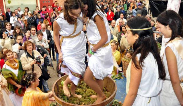Fiestas de la Vendimia de Castilla y León 2017