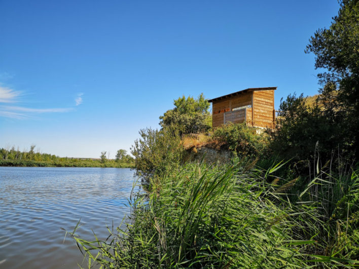 Reserva natural de las Riberas de Castronuño-Vega del Duero
