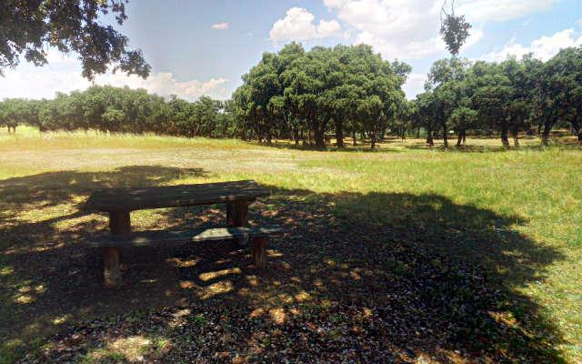 Mesas donde comer y descansar en el Palacio de Riofrío - Destino Castilla y León