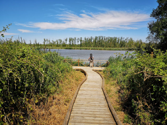 Plataforma de acceso al río en Castronuño