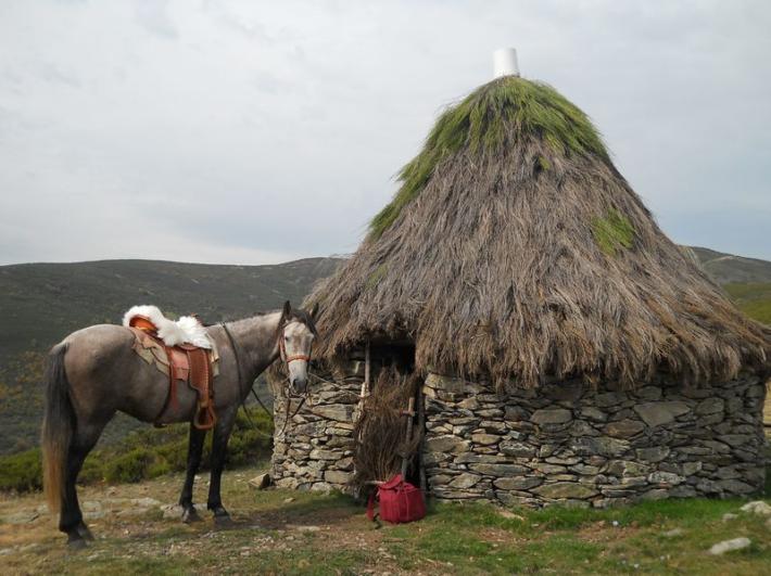 Rutas a caballo Fuente: lasendaturismo.com