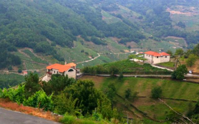 Bodegas en el Camino de Santiago Real de Invierno, en la parte de Galicia - Destino y Sabor