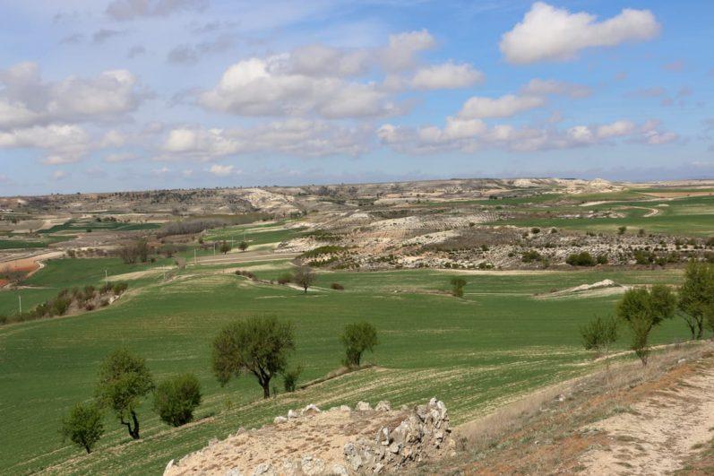 Paisaje de la Ribera del Duero Burgalesa