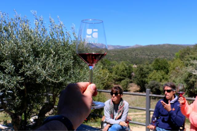 Cata de los vinos de la bodega 7 Navas - Destino Castilla y León