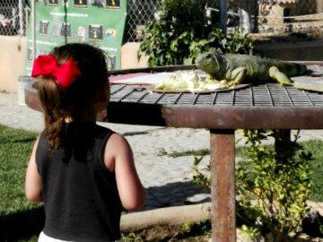 Castilla y León con niños