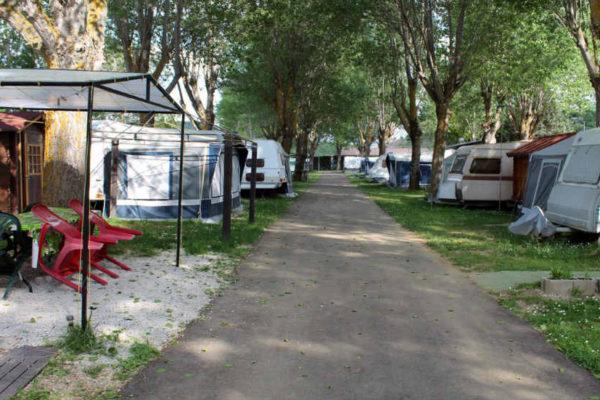 Parcelas en el camping Fuentes Carrionas - Imagen del camping