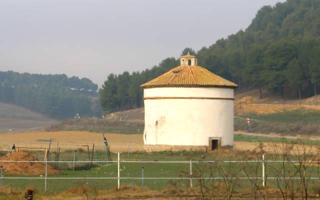 Palomar próximo a Ampudia - Destino Castilla y León
