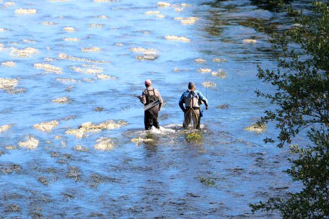 pesca de la trucha desde El Passo Honroso