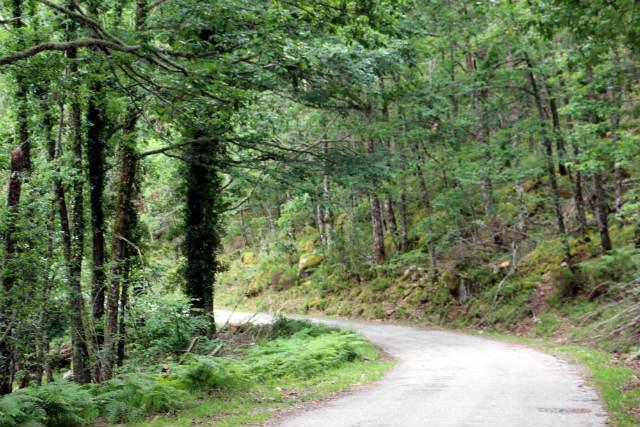 Carretera hacia Piornedo - Destino Castilla y León