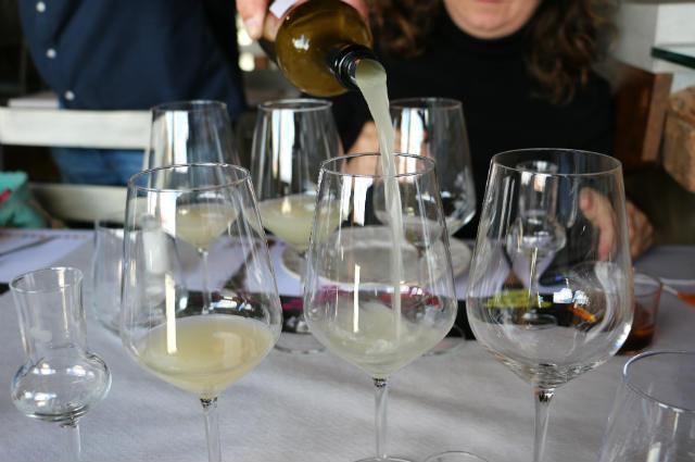 Cata de vinos blancos en proceso de clarificación - Destino Castilla y León
