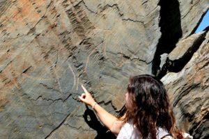 Visita al Yacimiento arqueológico de Siega Verde - Destino Castilla y León
