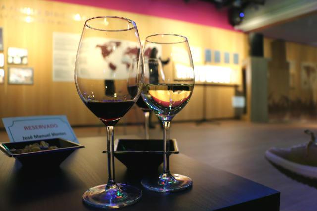 Show de humor en el Museo del vino Pagos del Rey - Destino Castilla y León