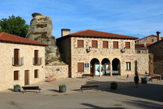 Museo de los árboles fósiles - Destino Castilla y León