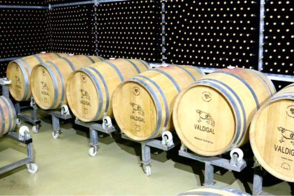 Cata vertical de los vinos Valdigal - Destino Castilla y León