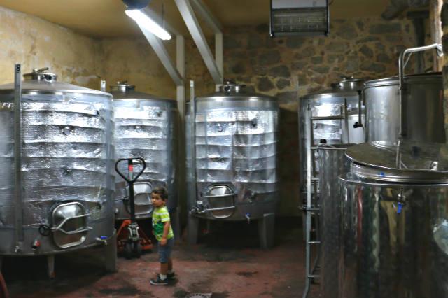 Sala de elaboración de la bodega Don Celestino - Destino Castilla y León