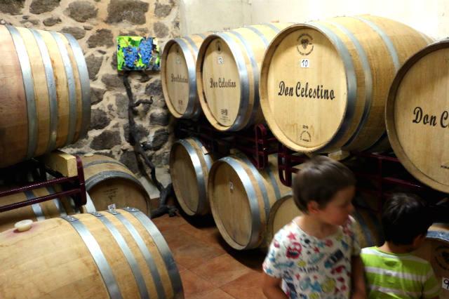 Sala de barricas de la Bodega Don Celestinos - Destino Castilla y León