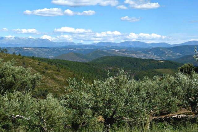 Vistas de la Sierra de Francia desde Herguijuela de la Sierra