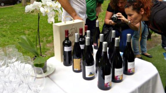 Cata de vinos de la DOP. Sierra de Salamanca - Destino Castilla y León