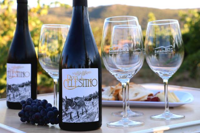Catando los vinos de Bodega Don Celestino a pie de viña - Destino Castilla y León