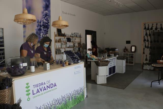 Recepción del Centro Tiedra de Lavanda - Destino Castilla León