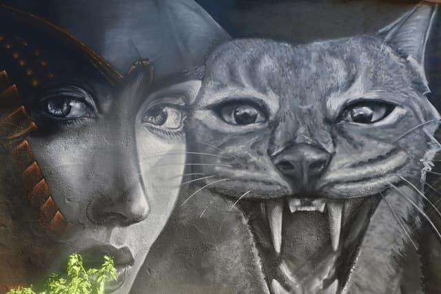 Mural felino, arte urbano en Garcibuey - Destino Castilla y León